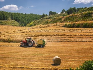 Agricultores-harvest-3914269_1280