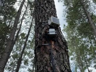 Extremadura-experimenta-en-Jarandilla-de-la-Vera-un-proyecto-piloto-para-la-emision-de-datos-y-alertas-en-materia-de-prevencion-de-incendios-forestales