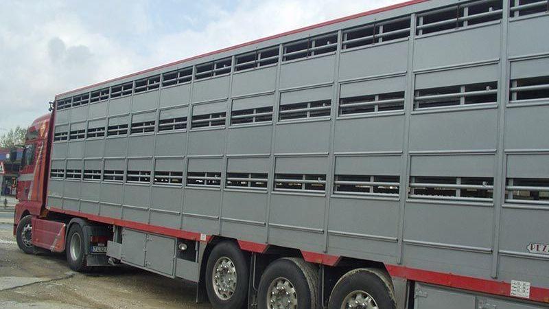 inmovilizado, camión, español, multa, 20.000 ,euros,
