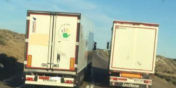 conductores, suicidas, camionero, ruta, opinión,