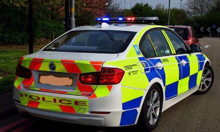 detenido, camionero, Reino Unido, personas, camión,