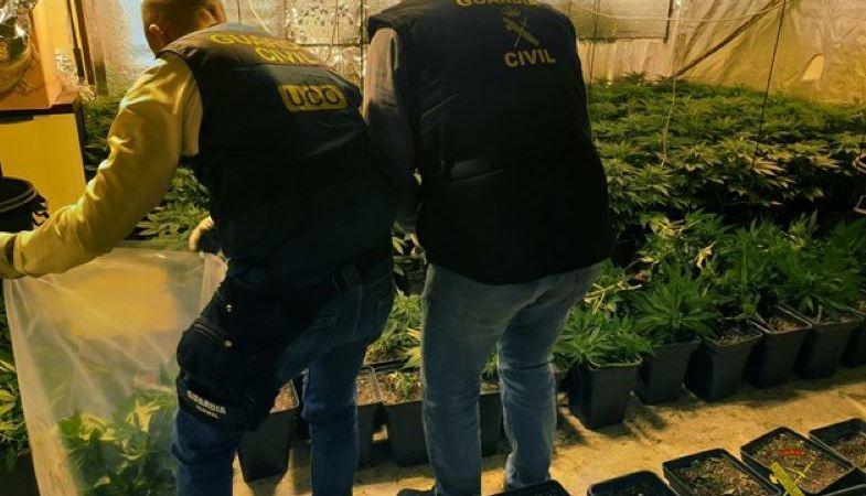 desarticulada, organización, tráfico de drogas, nivel, internacional,