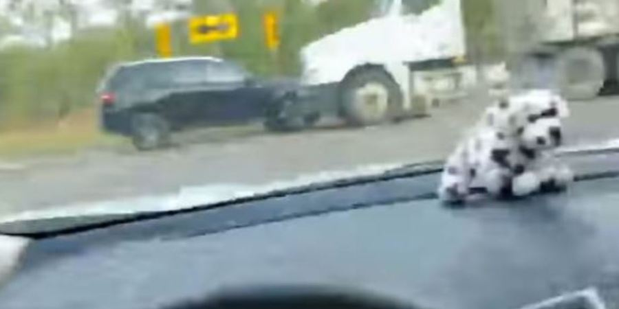 persecución, policial, colisión, camión,