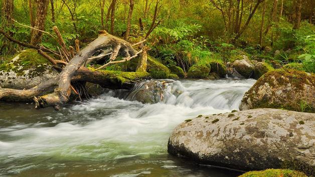river-_628x353