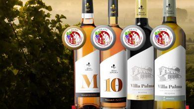 Photo of Adega de Palmela conquistou 4 medalhas na 11.ª Grande Mostra de Vinhos de Portugal