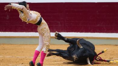 Photo of PS, PSD, PCP, CDS-PP e Chega contra fim dos apoios públicos às touradas