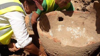Photo of Vestígios arqueológicos de Alvalade vão ser alvo de estudo