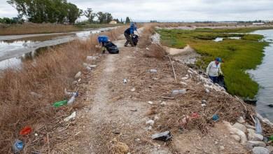 Photo of Autarquia recolheu lixo marinho da ciclovia Moita-Rosário após marés-vivas