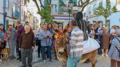 Photo of Alcochete: Festa do Círio dos Marítimos candidata a Património Cultural Imaterial