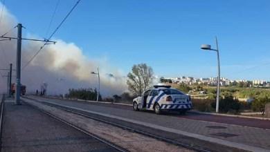 Photo of Incêndio em zona de mato em Corroios