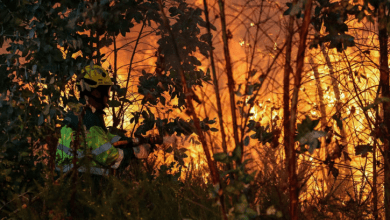 Photo of Quinze concelhos de seis distritos em risco máximo de incêndio