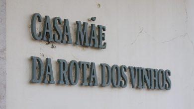 Photo of Autarquia de Palmela altera horário de funcionamento de estabelecimentos comerciais