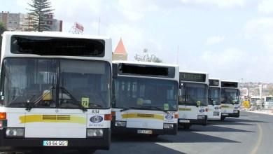 Photo of TST critica falta de visão 'verde' no concurso de mobilidade da AML