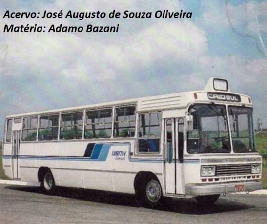 Apesar de a grande maioria dos Caio Gabriela ser encaroçada sobre chassi Mercedes-Benz, outras mecânicas marcaram a história do modelo, como o Fiat 140 OD, que recebeu a primeira e a segunda versão do ônibus.