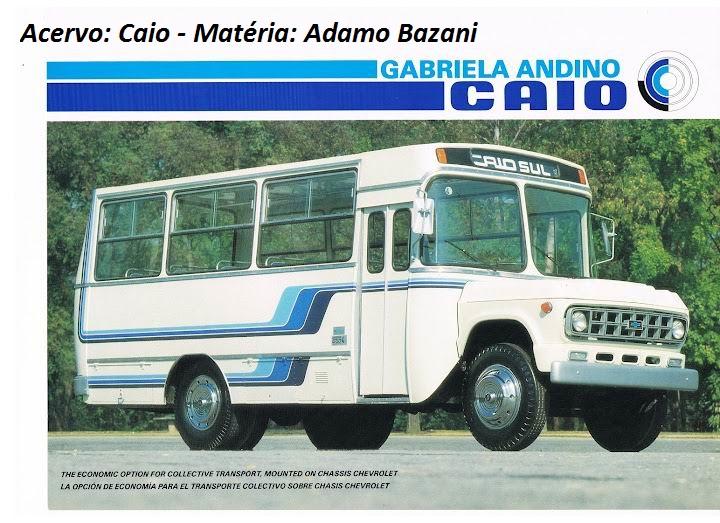 17-gabriela-adamo-bazani