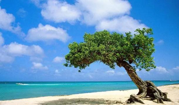 Aruba recebeu 24,7 mil turistas brasileiros em 2014