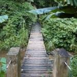 Turismo rural pedagógico de Joinville retoma visitas com a volta às aulas