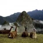Peru recebe 3,5 milhões de turistas em 2015