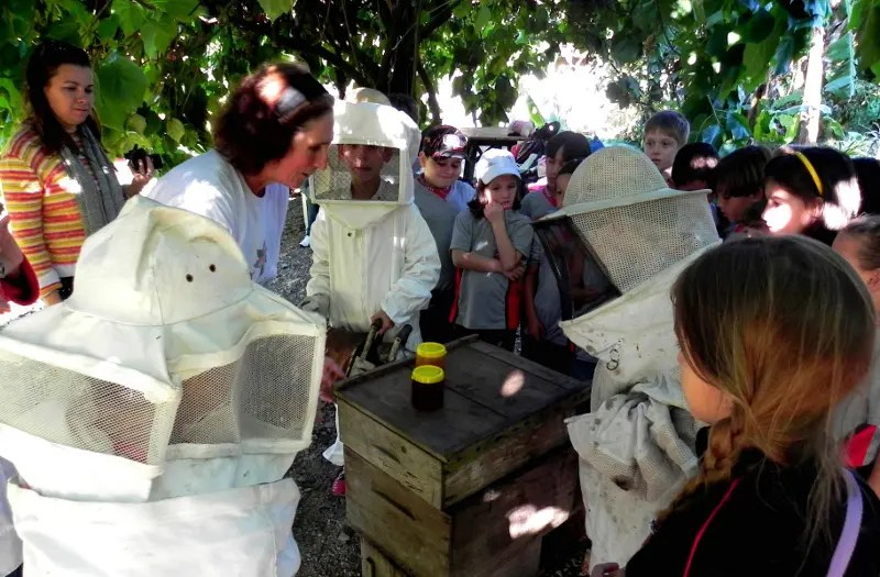Turismo rural pedagógico de Joinville será apresentado na Espanha