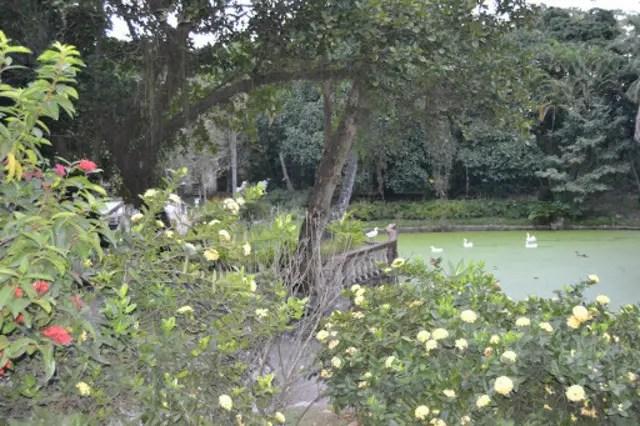 A capela Magdalena e Roberto de Regina: um Rio desconhecido de música erudita