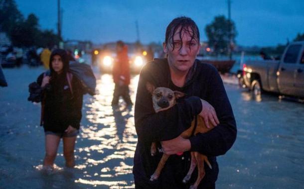 Harvey deixa ao menos 31 mortos em Houston, em colapso sob metros de água