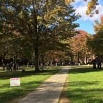 STB disponibiliza intercâmbio de férias para Yale
