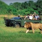 África do Sul e Fraport participarão da Feira Internacional de Turismo de Gramado