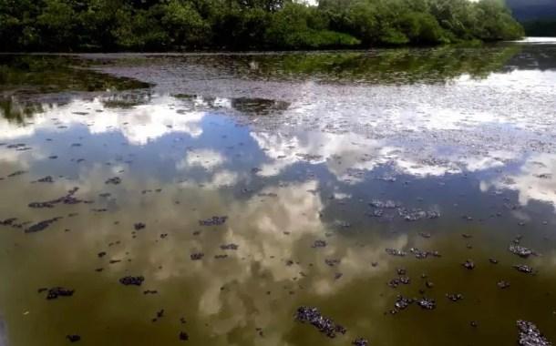 Conselho Estadual do Turismo da Bahia protesta contra danos ambientais na Baía de Todos-os-Santos