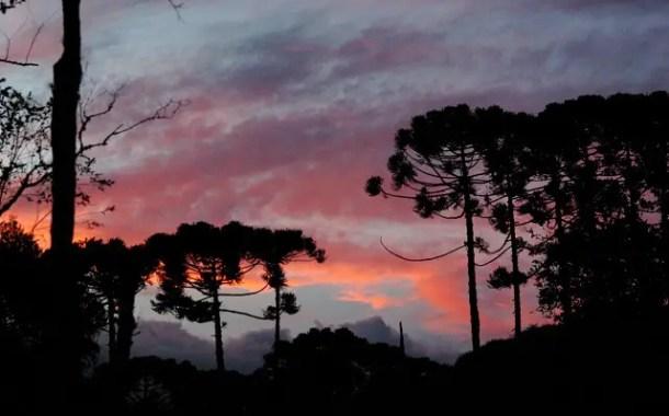 Cunha promove o Acordes na Serra, seu tradicional Festival de Inverno