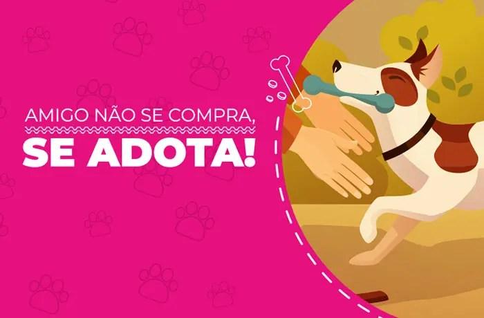 Em nova ação dedicada aos pets, Hurb cria página para estimular adoção consciente