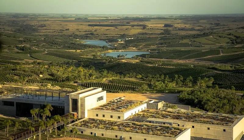 Uruguai está entre os melhores do mundo no enoturismo em vinícolas