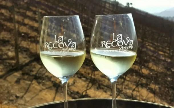 Rio de Janeiro reúne a vanguarda do vinho chileno em evento