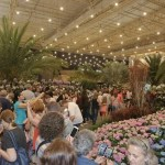 81a Festa das Flores de Joinville (SC) alia natureza e qualidade de vida