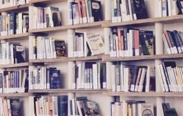 Ação brilhante: Noruega lança campanha de doação de livros em São Paulo