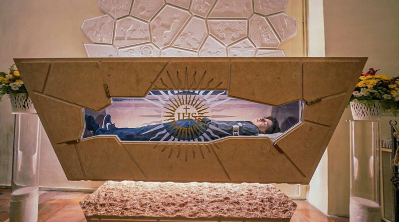 Carlos Acutis joven millennials camino a los altares