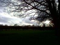 Primavera en los Meadows, uno de los parques más populares.