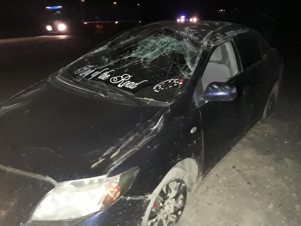 Accidente-Caballos-Sarmiento