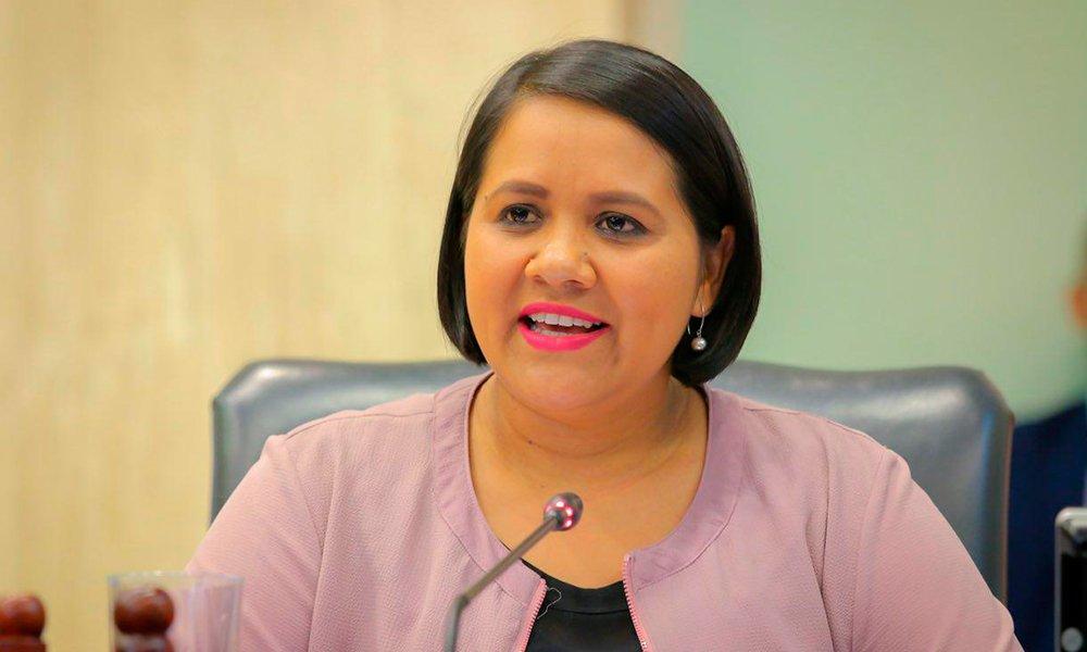 FMLN votará para superar veto al aumento de la pensión mínima