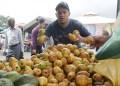 Las frutas se ven afectadas por las lluvias