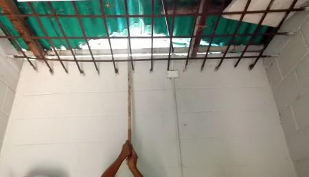 Abrieron la estantería donde almacenaban las Canaimas asignadas en 2010