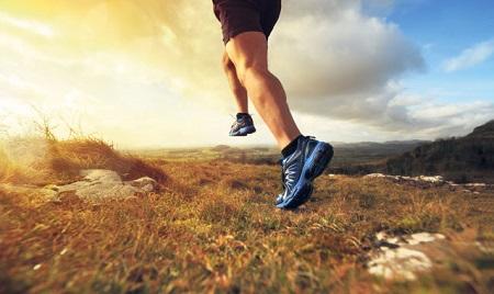 Un programa de acondicionamiento debe incluir planes de alimentación, ejercicios, reposo y tratamientos complementarios