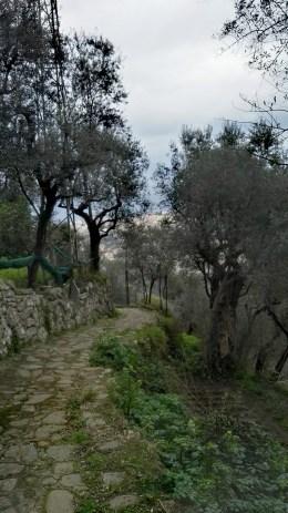 sentiero-sorrento-santagata-casarufolo1.jpg.jpg