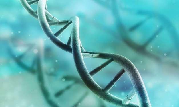 Las enfermedades raras y catastróficas, las olvidadas durante la pandemia