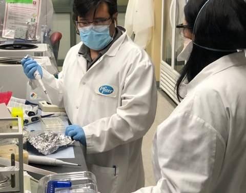 MSP y Pfizer firmaron acuerdo definitivo para obtener dos millones de dosis contra la COVID-19