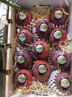 la-fruta-subtropical-de-los-cursos-en-fruit-attraction-la-mejor-cara-16-3