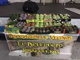 EXPOSICION DE CHIRIMOYAS Y FRUTAS SUBTROPICALES (2)
