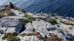 Voluntarios sobre las rocas del acantilado de Punta de la Mona 18