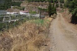 CAMINO ACCESO A LA FINCA MUNICIPAL EL ZAHORI 18