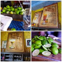 Meeting . Margarita In Todos Santos Mexico Diary Of