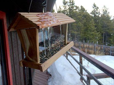 ice dam on the birdfeeder